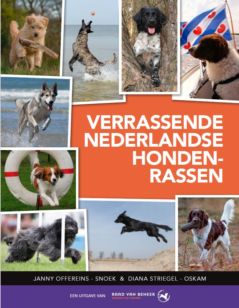 2018-01-31-09_55_57-Flyer-boek-Verrassende-Nederlandse-hondenrassen_A6-Staand.indd_.png